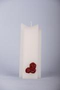 Modern roos rood