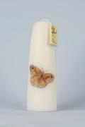 Gedachtenis Vlinder